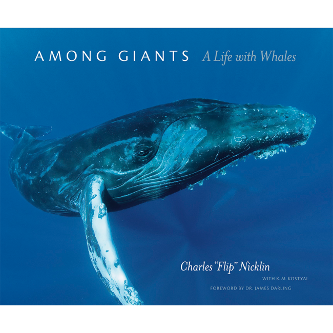 Among Giants by Flip Nicklin